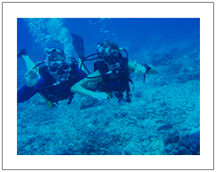 Diving in Gili island, maximal depth 12 meter