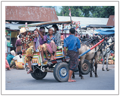 local transport of Lombok island