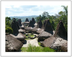 Traditional of Praijing village Sumba island Indonesia