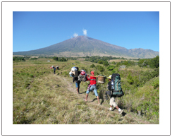 Mount Rinjani trekking via Sembalun, beginning trekking walk through the savanna