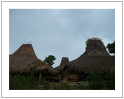 Traditional house of Wunga village Tanjung Sari Sumba island Indonesia