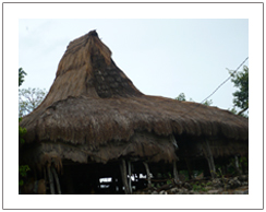 Traditional house of Wunga village Sumba island Indonesia